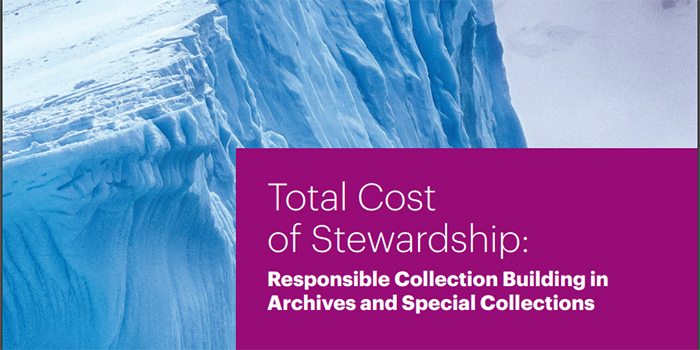 Report cover: 'Total Cost of Stewardship: Responsible collection building in archives and special collections'